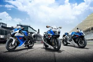 Bike: 2014 Suzuki GSX-R range